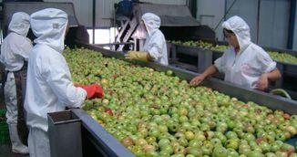 Atentie mare! Alimentele astea din China contin plastic, pesticide si chimicale care cauzeaza cancer!