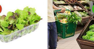 Nu mai cumpara niciodata salata la pachet! Iti poate distruge sanatatea!