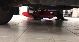 Cea mai tare dansatoare de limbo din lume trece pe sub mașină!