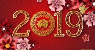 Horoscop Chinezesc 2019 - Incepe anul Porcului de Pamant. Previziuni generale