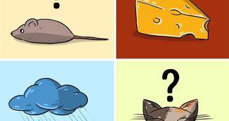 Ghicitoarea care a innebunit internetul. Unde sunt soarcele si pisica?