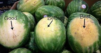 Invata sa alegi cel mai dulce pepene verde! Incearca aceste trucuri!