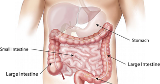 Curata-ti colonul si scapa de 10 kilograme in 3 saptamani cu acest remediu puternic!