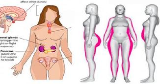 Acestea sunt cele cinci alimente care previn dezechilibrul hormonal la femei!