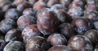 Foarte tare! Uite ce efect uimitor are consumul de cinci prune pe zi!