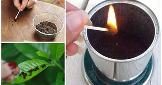 Incredibil! A dat foc la zatul de cafea! Uite ce lucru uimitor s-a intamplat dupa!