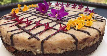 Tort fara zahar, cu ciocolata si cocos. Nu ai mancat nimic mai bun. Excelent pentru dieta