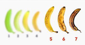 Proprietati surprinzatoare ale bananelor despre care nu ai mai auzit pana acum!