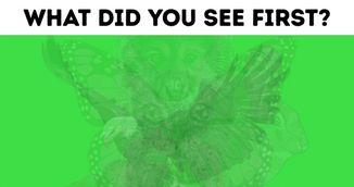 Ce animal vezi prima oara in imagine? Alegerea spune multe despre personalitatea ta