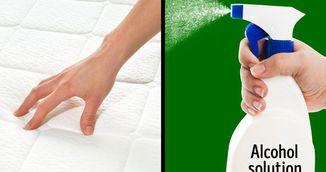 Cum sa-ti cureti si sa-ti dezinfectezi canapeaua intr-o singura zi. Trebuie sa incerci trucul asta