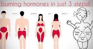 Cum sa-ti activezi hormonii care ard grasimile. Este mai usor decat credeai