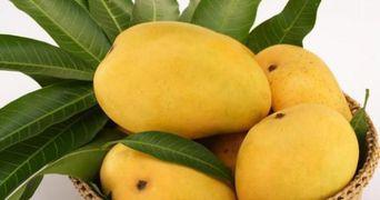 De ce sa mananci mango in fiecare zi! Face minuni pentru sanatate!