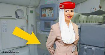 Sigur nu stiai asta! De ce isi tin stewardesele mainile la spate atunci cand urci in avion!