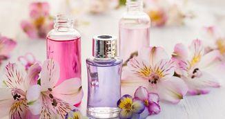 Arome naturale cu imense puteri vindecatoare! Trebuie sa le ai in casa!