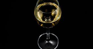 Adevarul despre efectul pe care il are alcoolul asupra creierului tau! Mai bei?
