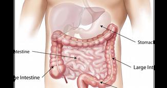 Metoda geniala care iti indeparteaza grasimea din colon. O poti incerca imediat acasa